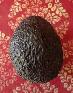 A ripe avocado